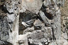 石英閃緑岩の層
