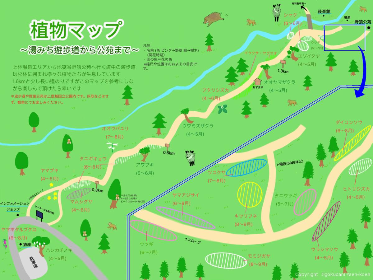 遊歩道マップ